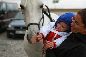Hippotherapy for babies - definition (3)