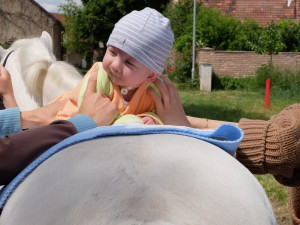 Hippotherapy for babies - safety (2)