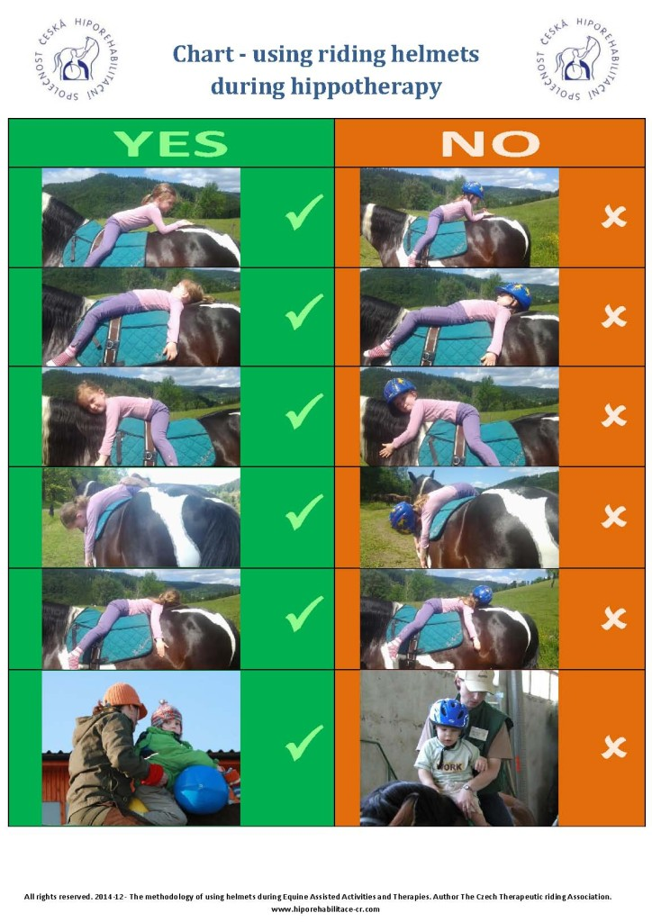 Hippotherapy - helmets use chart (2)
