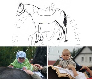 Hippotherapy- choosing atherapy position